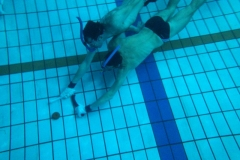 Onderwaterhockey Initiatie 2013